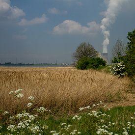 Kerncentrale Doel van Abra van Vossen