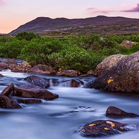 Ruhiger Fluss in Jotunheimen Nationalpark in Norwegen von Wouter Loeve