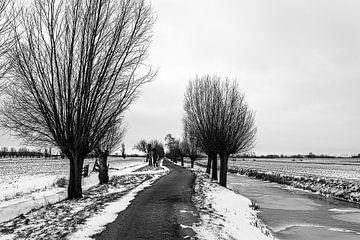 Piste d'hiver