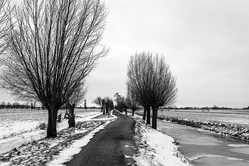 Winter pad van Ton de Koning