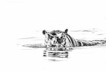Nilpferd von Robert Styppa