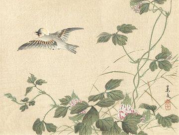 Vogel fliegt weg in der Nähe von Weinstock mit rosa Blumen von Matsumura Keibun - 1892