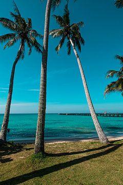 Palmen en zee van Bernd Hartner