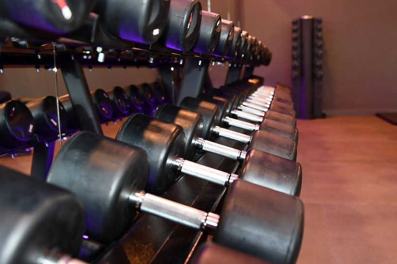 Fitness tools van Erik Terpstra