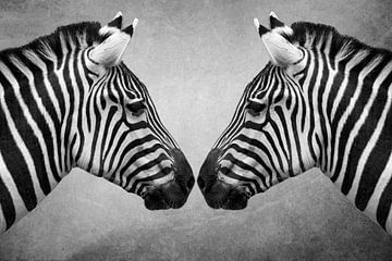 Porträt Zebras in schwarz und weiß von Marjolein van Middelkoop