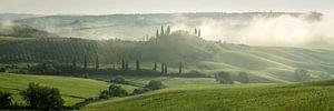 Toscaanse ochtend 2