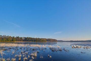Het Leersumse Veld op een vroege winterochtend van Richard de Boorder
