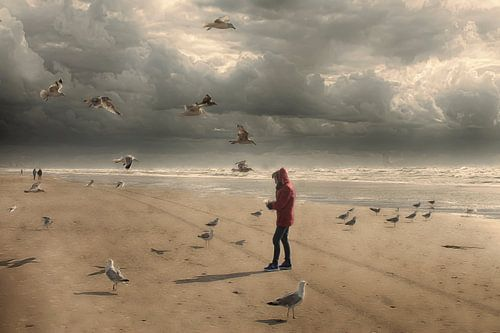 Strand  zee en meeuwen van