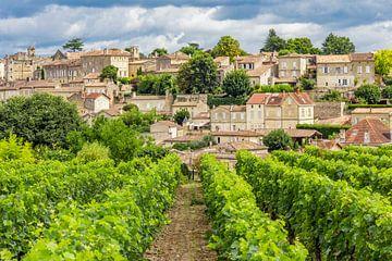 Wijngaard in Saint-Émilion van Easycopters