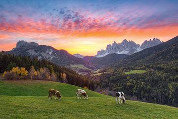Sunrise in Val di Funes van Michael Valjak