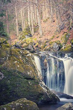 Waterval in het bos van Tobias Luxberg