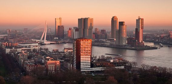 Rotterdam Skyline in Red