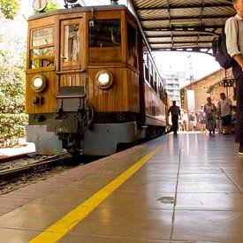 houten trein van Guido Akster