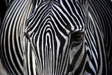 Afrikanisches Design von Joachim G. Pinkawa