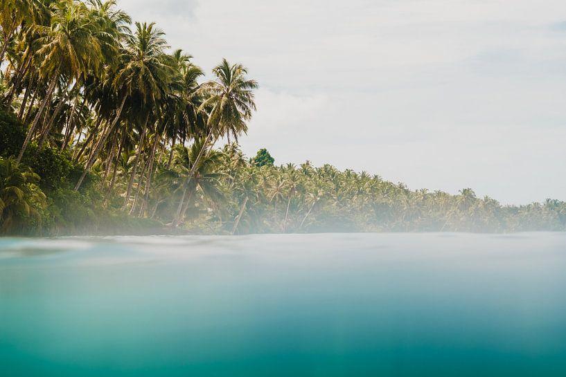 Mentawai-Inseln 2 von Andy Troy