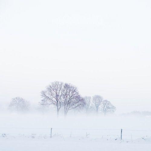 WinterMist von Foto NVS