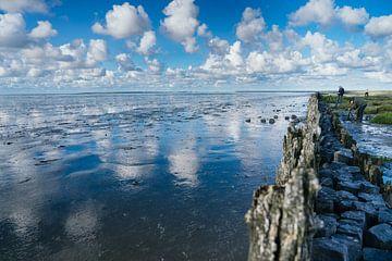 Landschaftsfoto Friesland Moddergat 02 von Lisenka l' Ami Fotografie