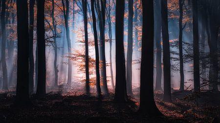 Fantasie van Tvurk Photography