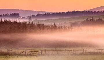 Sauerland Sonnenaufgang von Frank Peters