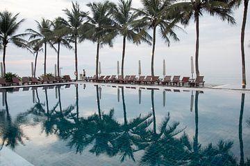 Palmbomen weerspiegeld in zwembad sur