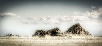 Dromende duinen