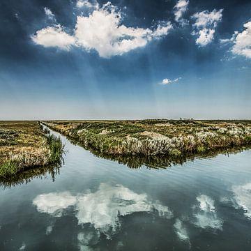 Het Noorderleeg nabij Holwerd op een zonnige zomerdag sur