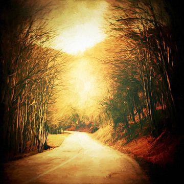 Chemin entre la forêt van
