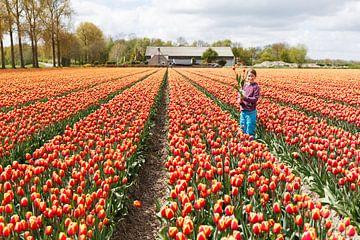 Tulpen in de Noordoostpolder van Petra Cremers