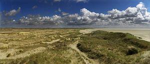 Panorama De Hors, Texel