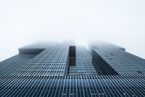 High Rise Fog
