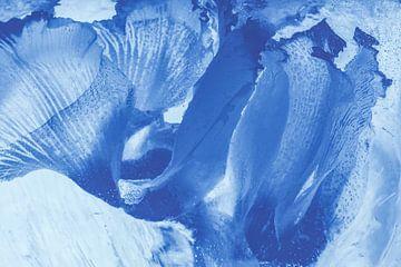 Alpenveilchen in Blau von Marc Heiligenstein