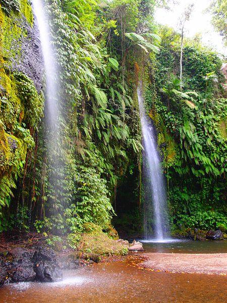 Wasserfall in Indonesien van Florian Franke