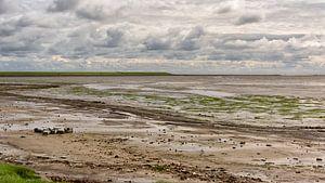 Waddendijk bij Nieuwe Sluis sur