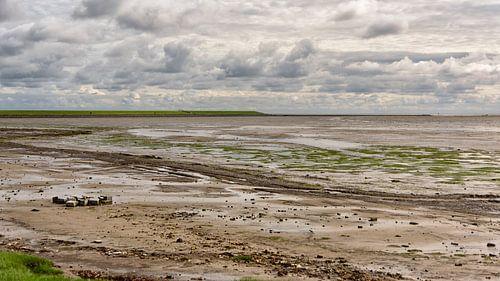 Waddendijk bij Nieuwe Sluis