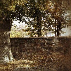 Herbststimmung von Andrea Meister