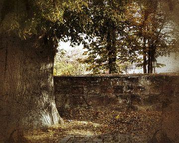 herfst stemming van Andrea Meister