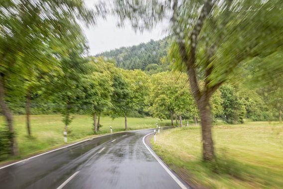Snel-weg van Miranda van Hulst
