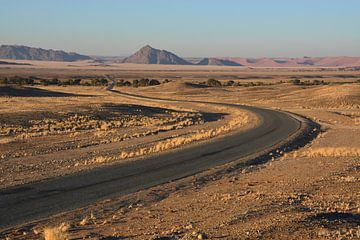 Landschap in Namibië von Toon Loonen