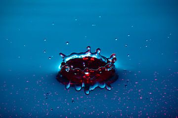 Kroon van water van Peter en Hetty van Veen