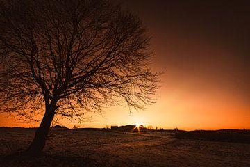Sonnenuntergang am Baum von MindScape Photography