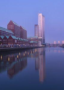 De Spoorweghaven in Rotterdam van Charlene van Koesveld