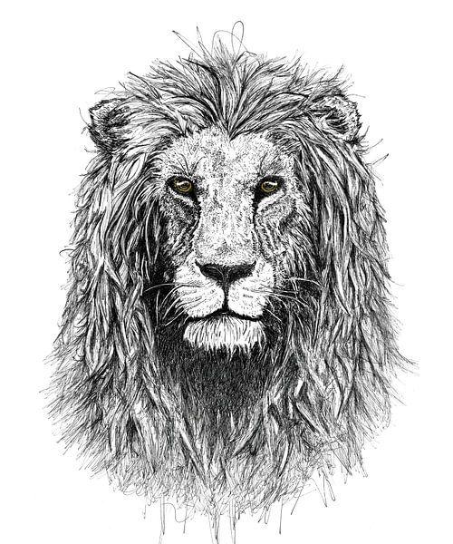 Leeuw van Willem Heemskerk