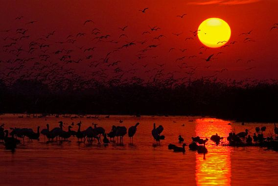Zonsopkomst boven het Csaj meer van AGAMI Photo Agency