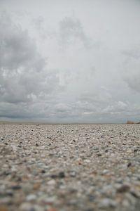 Schelpenpad op het strand
