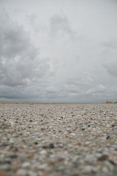 Schelpenpad op het strand von Foto van Anno