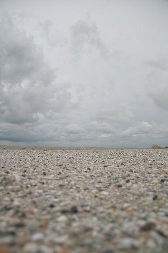 Schelpenpad op het strand van