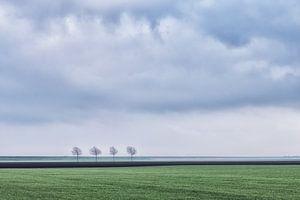 Het Groninger landschap