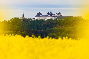 Château d'Augustusburg