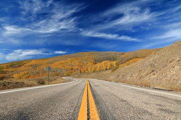 Highway 12 verdwijnt in het herfstbos onder een blauwe hemel van Jonathan Vandevoorde
