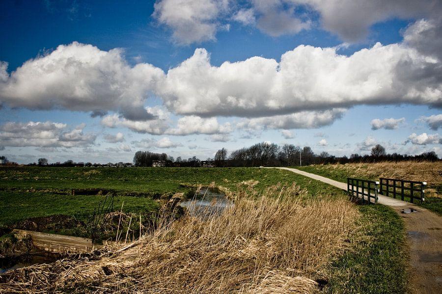 Hollands landschap 1